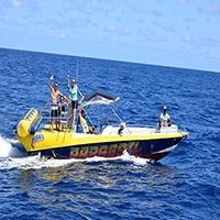 Passeio de Lancha // Boat Tour