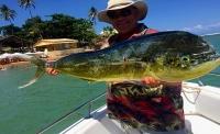 Pesca Litorânea & Oceânica // Deep Sea Fishing