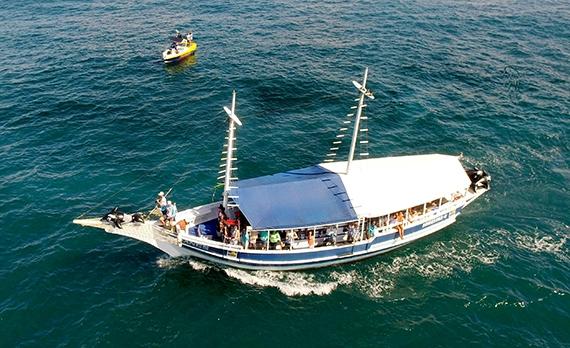 Passeio de Escuna c/ Snorkeling // Schooner Tour with Snorkel