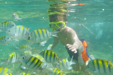 Snorkeling Praia do Forte