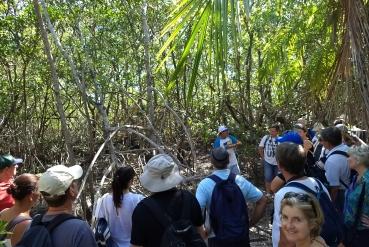 Hiking Tour - Caminhada pela Floresta